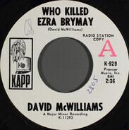 David McWilliams - Who Killed Ezra Brymay
