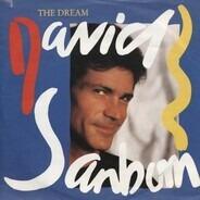 David Sanborn - The Dream