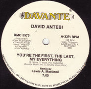 David Antebi - You're The First, The Last, My Everything