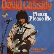 David Cassidy - Please Please Me
