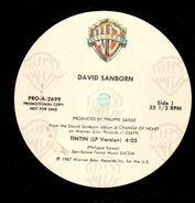 David Sanborn - Tintin