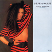 Dead Or Alive - What I Want (Dance Mix)
