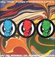 del the funky homosapien - dr bombay