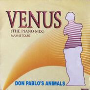 Don Pablo's Animals - Venus / Paranoia