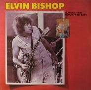 Elvin Bishop - Is You Is or Is You Ain't My Baby