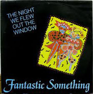 Fantastic Something - The Night We Flew Out The Window