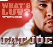 Fat Joe Featuring Ashanti - What's Luv?