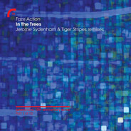 Faze Action - In The Trees (Jerome Sydenham & Tiger Stripes Remixes)
