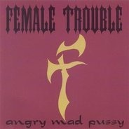 Female Trouble - Angry Mad Pussy