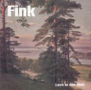 Fink - Loch in der Welt