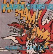Flamin' Groovies - Slow Death, Live!