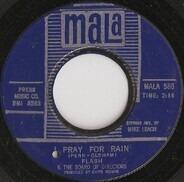 Flash & The Board Of Directors - I Pray For Rain / When The Love Light Is Shinin'