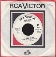 Floyd Cramer - I Wanna Be Free / Papa Gene's Blues