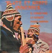Flute et Harpe Indiennes - Flute et Harpe Indiennes