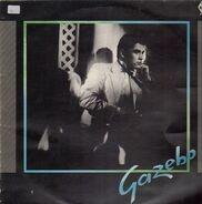 Gazebo - Gazebo