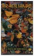 Gilberto Gil / Elis Regina / Caetano Veloso a.o. - Brasiliando: A Festa Do Som Brasil