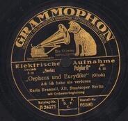 Gluck - Orpheus und Eurydike / Der Prophet