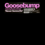 Goosebump Featuring Romina Johnson - Never Gonna Do