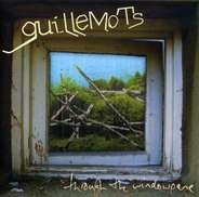 Guillemots - Window