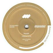 H.O.S.H. - Steppenwolf (Jerome Sydenham Remix)