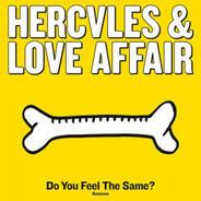 Hercules & Love Affair - Do You Feel The Same? (Remixes)