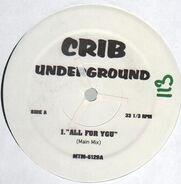 Hip Hop Sampler - Crib Underground