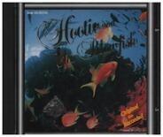 Hootie & The Blowfish - live