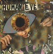 Human Eye - Human Eye