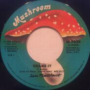 Iain Matthews - Shake It