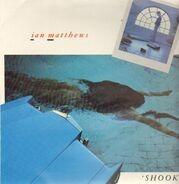Iain Matthews - Shook