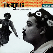 Incognito - Can You Feel Me (Remix)