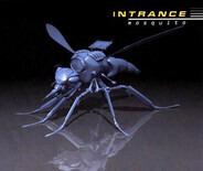 Intrance - Mosquito
