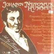 J. N. Hummel - Mandolin / Bassoon Concerto