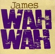 James & Brian Eno - Wah Wah