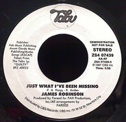 James Robinson - Just What I've Been Missing