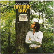 Joe Beck - Nature Boy