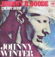 Johnny Winter - Johnny B. Goode