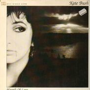 Kate Bush - Alternative Hounds Of Love