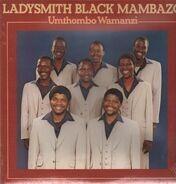 Ladysmith Black Mambazo - Umthombo Wamanzi