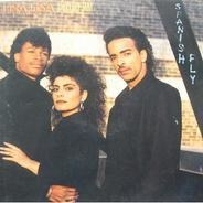 Lisa Lisa & Cult Jam - Spanish Fly