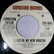 Livingston Taylor - Loving Be My New Horizon