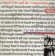 Lloyd Cole & The Commotions - Cut Me Down (Remix)
