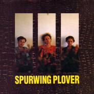 Lul - Spurwing Plover