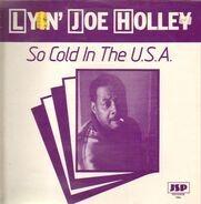 Lyin' Joe Holley - So Cold In The U.S.A.