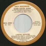 Lynyrd Skynyrd - Down South Jukin'