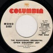 Mahavishnu Orchestra - Open Country Joy