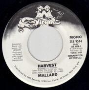 Mallard - Harvest / Harvest