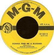 Marvin Rainwater - Gonna Find Me A Bluebird / So You Think You've Got Troubles