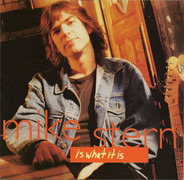 Mike Stern - Is What It Is