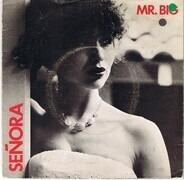 Mr Big - Senora